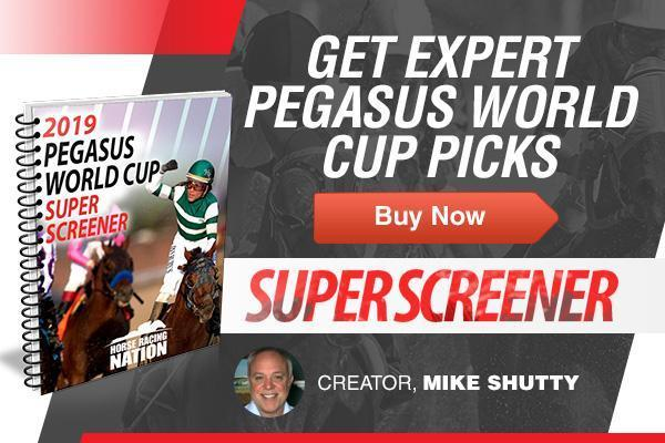 Pegasus World Cup 2019 Picks
