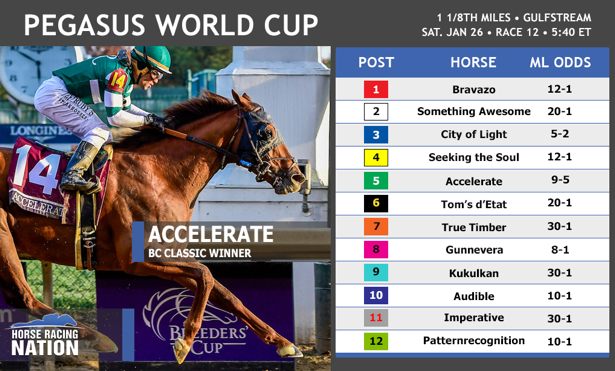 Pegasus World Cup 2019: Entries, odds and post positions