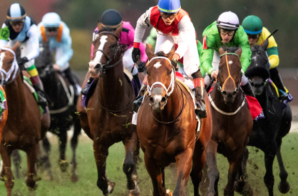 Breeders Cup To 2019 Kentucky Derby 3 Horses To Watch