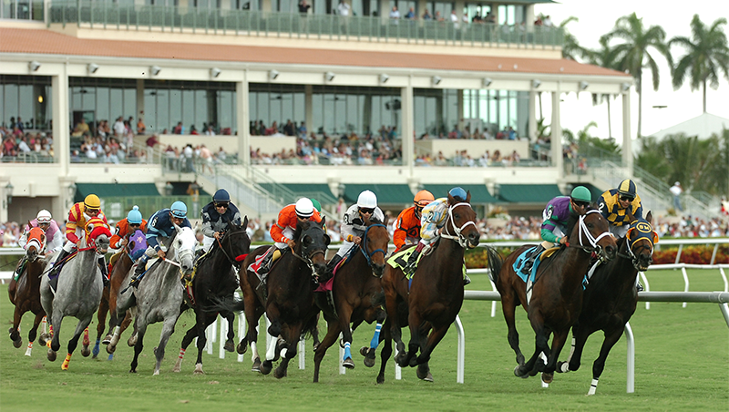 Horse Racing Nation - HorseRacingNation com